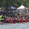 Charlotte Asian Festival's Dragon Boat race. COURTESY OF ANDREA LEE